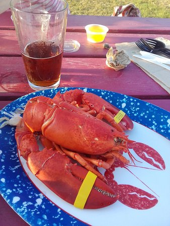 Lincolnville, ME: Great lobster