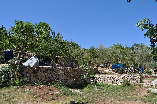 One Of The Campsite 39 S Terraces At Spring Time Bartula My Olive Garden Camp Stari Bar