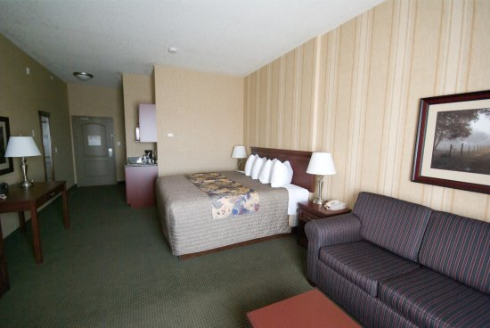 Redwood Inn & Suites : Single King Suite