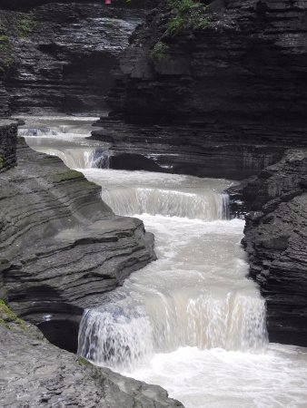 Watkins glen state park ny top tips before you go with for Cabin rentals vicino a watkins glen ny
