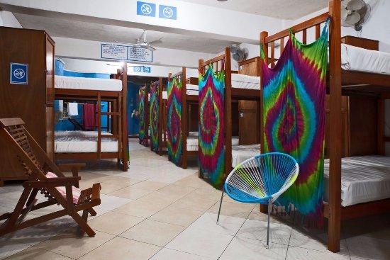 Hostelito Cozumel: dormitory