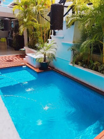 Hostelito Cozumel: pool