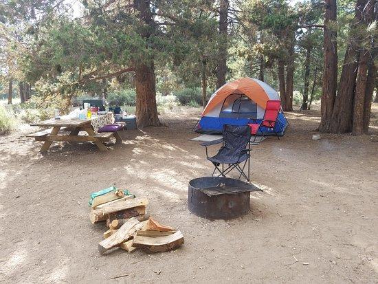 Fawnskin, CA: My campsite #78