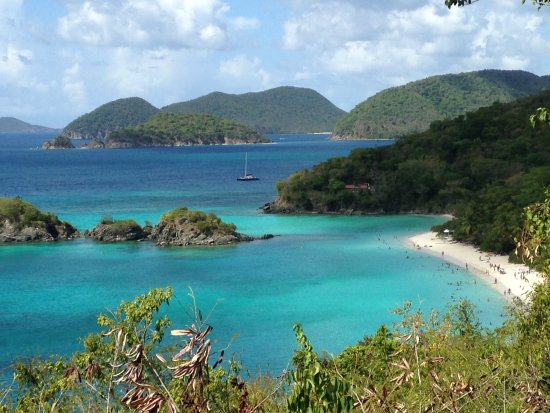 View Of Trunk Bay Beach From Road