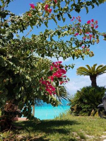 Pompano Beach Club Photo