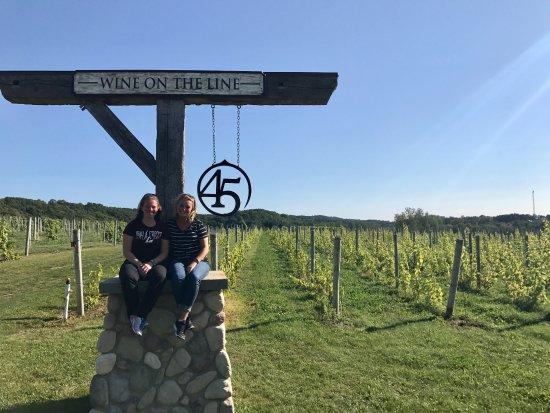45 North Vineyard & Winery: Outisde by vineyard