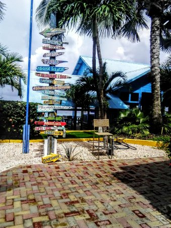 Divi Flamingo Beach Resort and Casino: Here indications On Drift wood: Diving, Spa the Touch, Sand Beach, Dining, Casino and Family roo