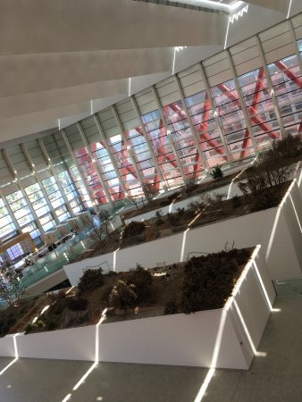 Museo de la Evolucion Humana : photo4.jpg