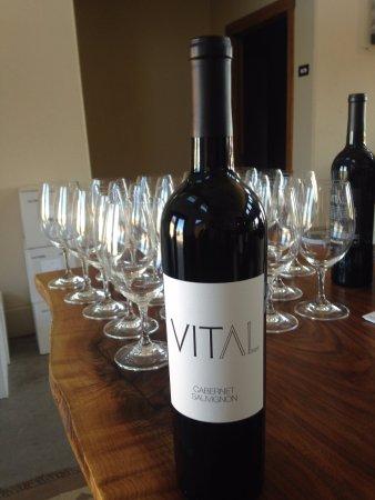 Vital Wines: Cabernet Sauvignon
