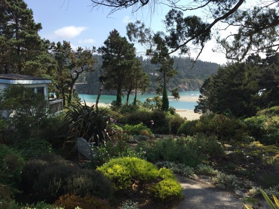 Alegria Oceanfront Inn and Cottages 사진