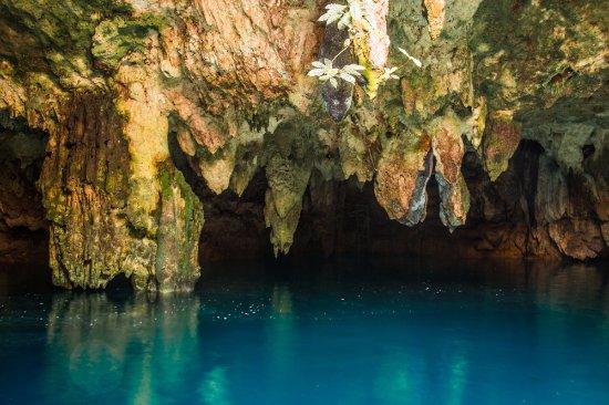 Cenote La Noria
