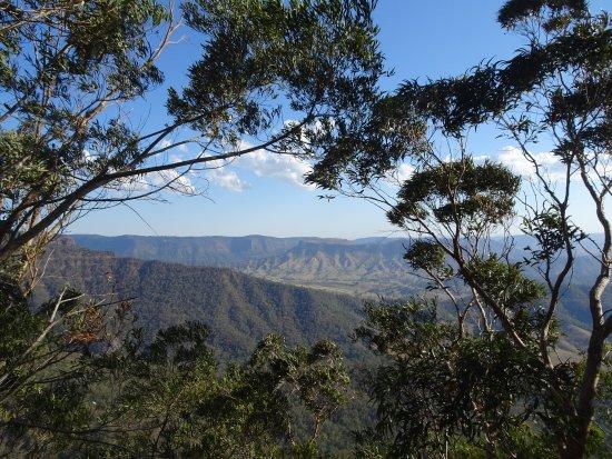 Canungra, Australia: photo4.jpg