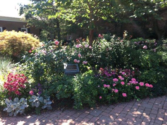 Saugatuck, MI: Butler Street rose garden