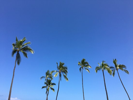 Honaunau, HI: photo0.jpg