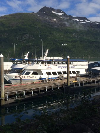 Major Marine Tours - Prince William Sound Glacier Cruise照片