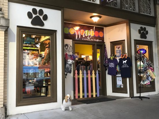 Hendersonville, Carolina del Nord: Wag! A Unique Pet Boutique