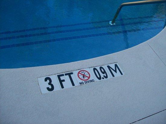 Anderson, ساوث كارولينا: The Outdoor Pool 3-4 Feet Deep