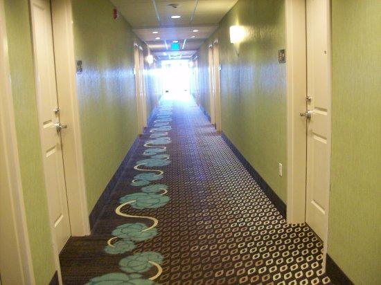 Anderson, SC: The Interior Corridor to the Rooms