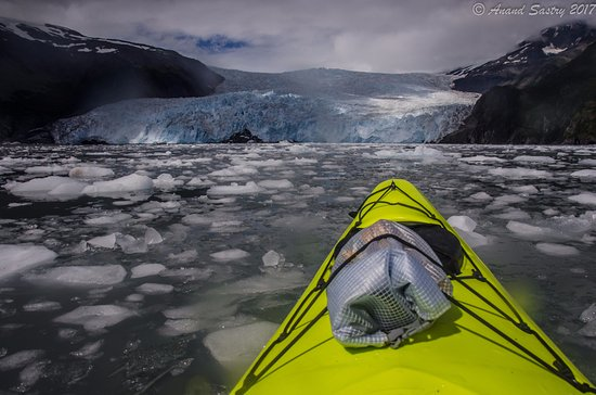 Liquid Adventures : At the forefront of the amazing Aialik glacier where we lunched amidst icebergs.