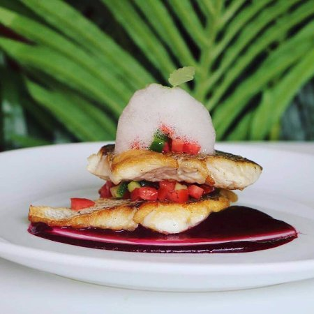 Woollahra, ออสเตรเลีย: Red Snapper
