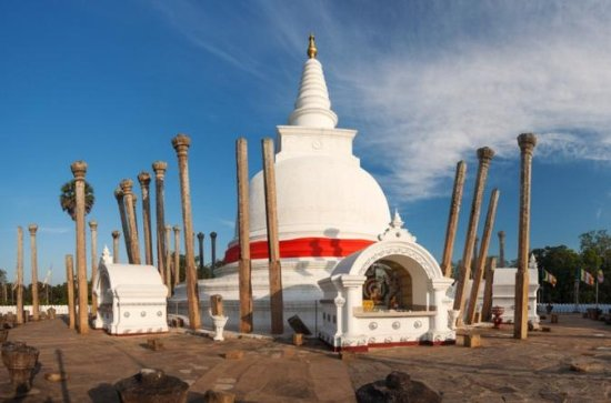 Tour privato: Anuradhapura e la statua