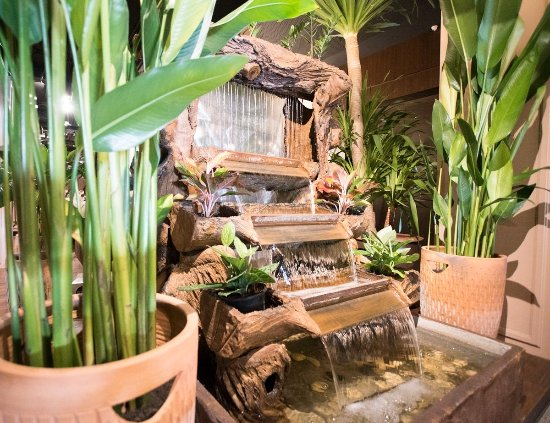 Truffles Bar & Ristorante: Lot of green palms and waterfalls makes you feel at home