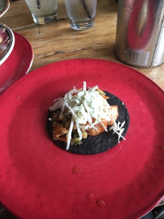 Taco Agave Photo
