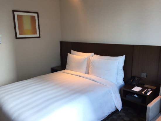 Lotte City Hotel Myeongdong Photo
