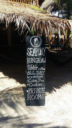 Seapony Bungalow