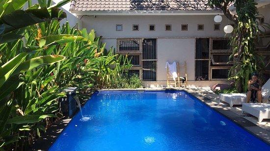 Lokal Bali Hostel Photo