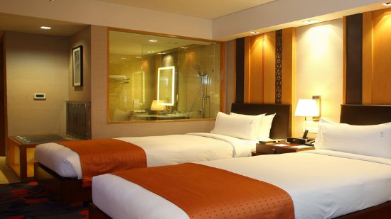 Holiday Inn New Delhi Mayur Vihar Noida: 2 single bed standard non smoking