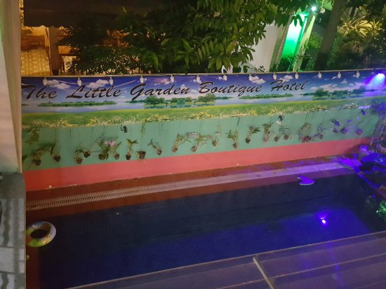 The Little Garden Boutique Hotel: Pool at Night