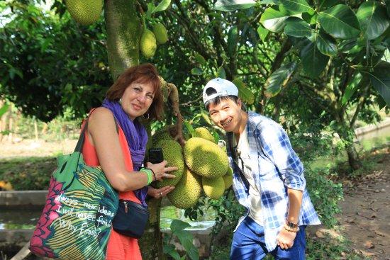 Compagnon Voyage: jacke fruit