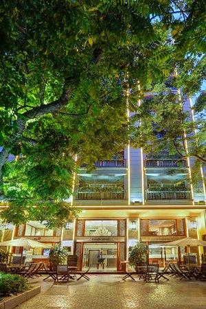 Conifer Boutique Hotel: Hotel Ground