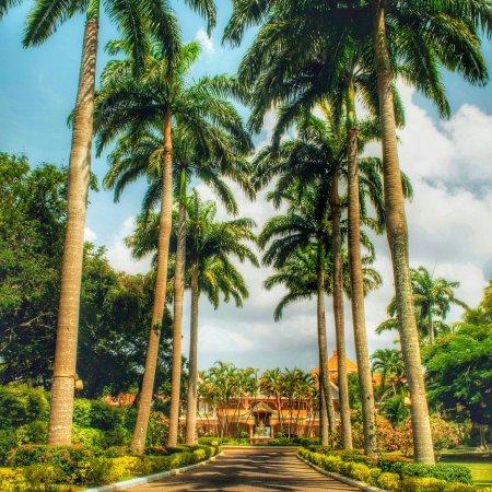 Coco Reef Tobago: Anniversary 2016