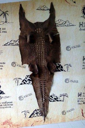 Chalong, Thailand: оказывается, в Porosus можно купить не только изделия из кожи крокодила, но и саму шкуру ...