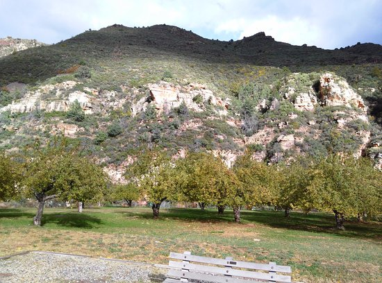 Slide Rock State Park: The old apple orchards still growing strong!