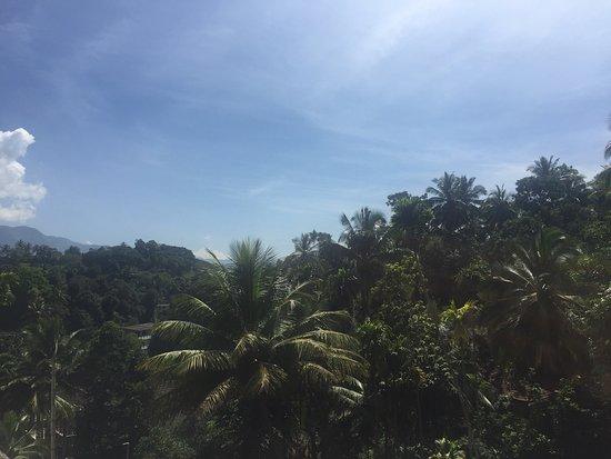 Best stay so far in Sri Lanka!