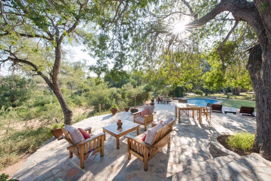 Balule Nature Reserve, Afrika Selatan: relax on our terrace or at the pool in the shade of  a huge weeping boerbean