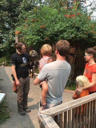 Cascades Raptor Center: grandkids had rapt attention