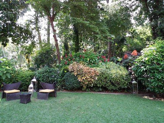 The Kandy House: 20170830_145928_large.jpg