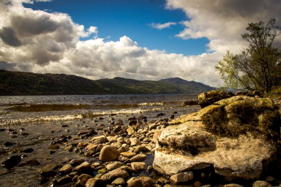 Glenmoriston, UK: Lochside