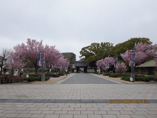 Tokugawa Garden : 徳川園の入口前の広場です。この時期の桜がきれいです。