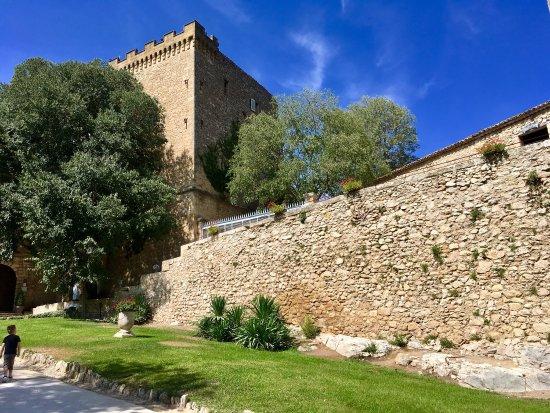 Chateau de la Barben: photo6.jpg