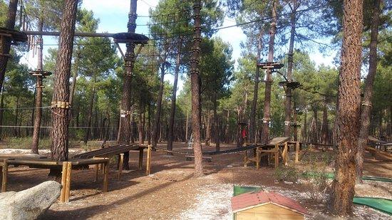 Pinocio Parque de aventuras
