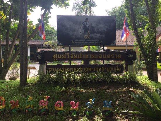 Trat, Thailandia: Salakphet Mangrove Walkway