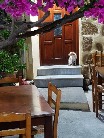 Maza, Greece: IMG-20170908-WA0001_large.jpg