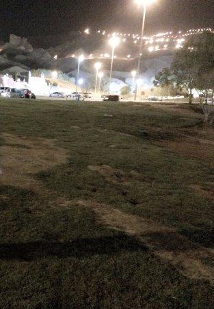 Parque Mubazzara: Park View