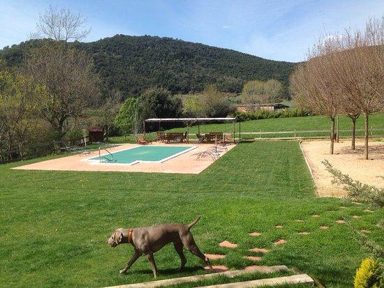 Sant Marti de Llemena, إسبانيا: Lucky inspeccionando :)