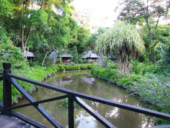 Sepilok, Malaysia: View as walking through the resort grounds
